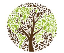 Season of Creation: Movimento global contra as alterações climáticas