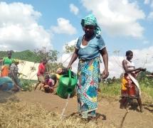 Beira, Moçambique: um ano a aprofundar laços e a trabalhar em conjunto