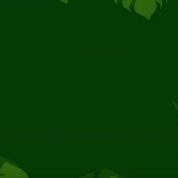 Amazónia: Educação e Ecologia